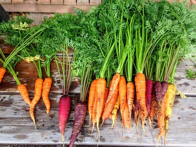 čerstvá zelenina.jpg